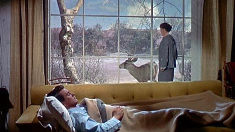 Sve što nebo dopušta (All That Heaven Allows, 1955)